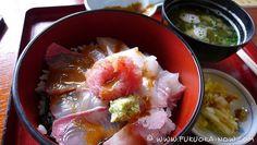 noko kamome eatery's kamomedon at nokonoshima island