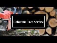 treeremoval Columbia SC
