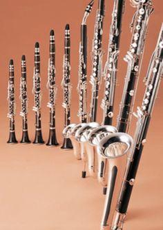 Bass clarinet #6