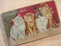Vintage Tin Box Droste Chocolate Langues de Chats Cats Kittens c 1950s Dutch #Droste