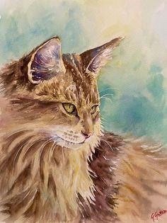 Fabolous cat, watercolor, pet portrait by Giulia Gatti Watercolor And Ink, Watercolor Paintings, Animal Sketches, Kittens Cutest, Pet Portraits, Bald Eagle, Watercolors, Pets, Gallery