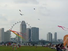 The Marina Barrage is Singapore's 15th reservoir and first reservoir in the city. It provides water storage, flood control and recreation. It is also a great place for kite-flying or picnics with families and friends. Taxi: About 18 minutes from RP
