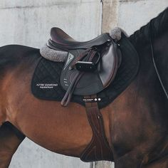 Why do you think is it essential to consider the proper suggestions in acquiring the equestrian boots to be utilized with or without any horseback riding competitors? Horse Riding Gear, Riding Hats, Horse Gear, Horse Tack, Horse Stalls, Horse Barns, Horse Riding Outfits, Equestrian Boots, Equestrian Outfits