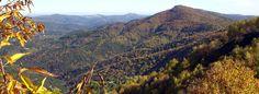 automne-01.jpg (Image JPEG, 980×360 pixels)