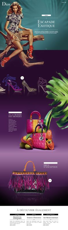 Dior web design
