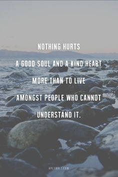 Nothing hurts a good soul and a kind heart more than to live amongst people who cannot understand it.