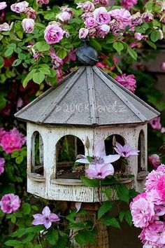 Birdhouse among the roses
