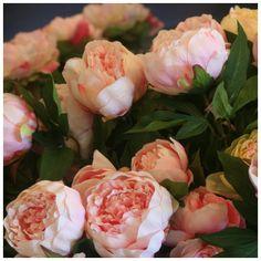 vase illusion d'eau fleurs artificielles pivoine & liseron luxe