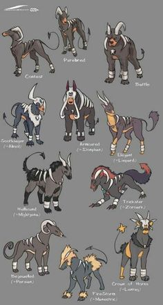 "wheatart: ""I LOVE the Pokemon subspecies/variations meme that has been going around, and I had to try it on one of my favourites, Houndoom! I think the Hellhound variation is probably my favourite. Pokemon Breeds, Pokemon Memes, Pokemon Comics, Pokemon Cards, Pokemon Fusion Art, Pokemon Fan Art, Fantasy Creatures, Mythical Creatures, Pokemon Real"