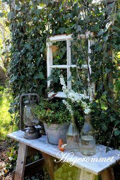 My Garden Setting