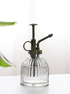 Plant Watering Can, Small Watering Can, How To Water Succulents, Green Girl, Water Spray, Lawn And Garden, Soap Dispenser, Spray Bottle, Indoor Plants