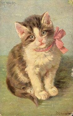 gato gatito Loro Animal, Cool Cats, I Love Cats, Baby Animals, Cute Animals, Cat Cards, Illustrations, Here Kitty Kitty, Animal Paintings