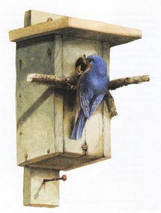 Artist Marjolein Bastin ... love her bird art.