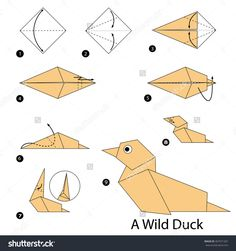 Step By Step Instructions How To Make Origami A Wild Duck. Stock vektorkép 407071267 : Shutterstock