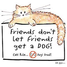 Friends Don't Let Friends Get A Dog! animal humor. cat. tshirt. cat lady.