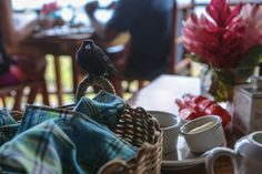 Peg, a local bird, joined me for breakfast Ladera Resort St Lucia, Bird, Table Decorations, Breakfast, Morning Coffee, Birds, Dinner Table Decorations