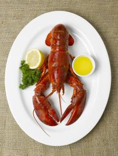 How to Heat Frozen Whole Lobster - got a good deal but didn't know what to do with them! lol