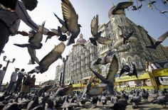 A man feeds pigeons outside the Taj Mahal hotel, one of the targets of the 2008 terror attacks in Mumbai, India. (AP)