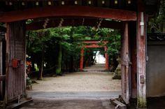 https://flic.kr/p/9tmyV4 | old gate | motoiwashimizu-hachimangu, Nara