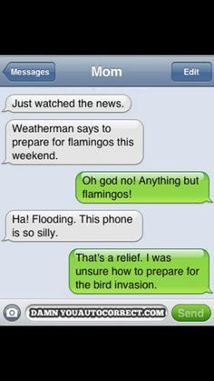 BEWARE THE BIRD INVASION! :)