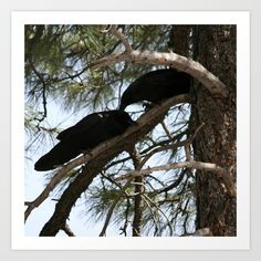 Crows in Love Art Print by Christine aka stine1 - $24.96