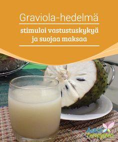 Graviola-hedelmä stimuloi vastustuskykyä ja suojaa maksaa   Graviola-hedelmä (annona muricata) tunnetaan englanniksi #soursop-hedelmänä ja #espanjaksi #guanabana-hedelmänä.  #Luontaishoidot