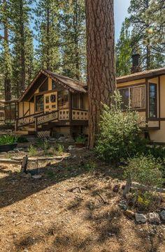 Tree House Style Cabin Rental Nestled In San Bernardino National Forest,  California