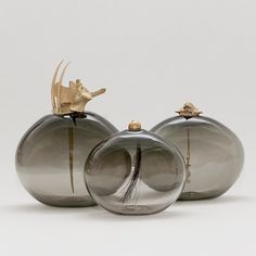 Lindsey Adelman, Curiosity Vessels, hand blown glass bottles with cast brass stoppers. Hybrid acorns, coral, porcupine quills, and human vertebrae become curiosities displayed outside of the vessel rather than inside of it.