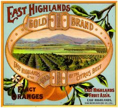 East Highlands San Bernardino County Gold Buckle Orange Citrus Fruit Crate Box Label Art Print