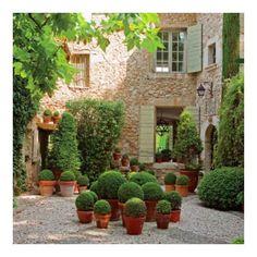 Provence green