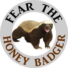'Fear Indian Honey Badger Predator Animal ' Sticker by rubina Honey Badger Humor, Harpy Eagle, Shoebill, Work Friends, Wild Love, Wisconsin Badgers, Interesting Information, Cartoon Memes, Snow Leopard
