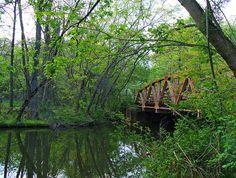 Bridge on Alexander Road, Princeton