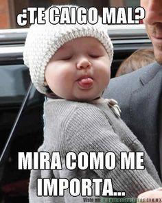 Mira_como_me_importa.jpg (488×613)