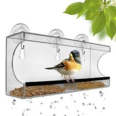 Large Window Bird Feeder by Chillax with free Bird Caller and Clear Removable Water Tray With Holes- Best For Bird Lovers Kids & Pets - Effortless to Install Fill & Remove- 100% Garentee