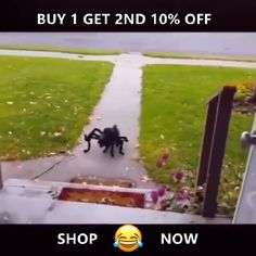 Halloween Party Pet Dog Cat Horror Simulation Spider Costume Source by trendonyou_official Dog Spider Costume, Dog Halloween Costumes, Pet Costumes, Halloween House, Fall Halloween, Halloween Party, Halloween Horror, Funny Animal Videos, Funny Animal Pictures
