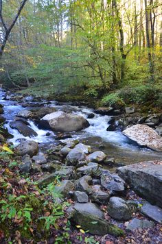 Oconaluftee River, Great Smoky Mountains, near Cherokee and Bryson City, NC
