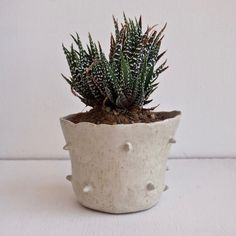 Oatmeal white spiky ceramic planter, handmade planter, ceramic,plant pot, unique gift, flower pot,pottery planter, handmade pottery,