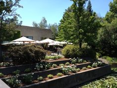 The terrace at J Vineyards, Sonoma