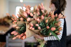 Tulipány z rodiny Impression pěstujeme u nás na farmě od samého počátku a nenecháme na ně dopustit. Patří podle nás k nejkrásnějším jednoduchým tulipánům vůbec. Silný vzrůst, dlouhatánské stonky a krásný odstín syté meruňkové.