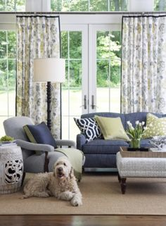 Pinned for box pillow and curtain design. Indigo and Citron Living Room