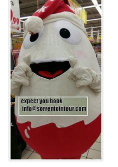 expect you book info@sorrentointour.com