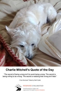 Charlie Mitchell's Quote of the Day!