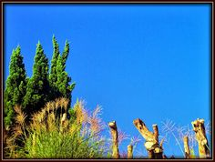 Blue sky in the morning by yosiki よしき  on 500px http://kissy-g.blogspot.jp/2013/10/blog-post_7397.html