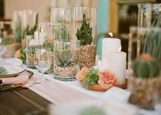 Use varying heights of glass vessels, filled with succulent potting soil and succulents, to create a party-perfect table runner.
