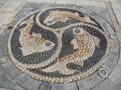 This pebble mosaic in Swanage, Dorset, was made by Maggy Howarth, and is in The Square, outside the Heritage Centre (which was itself once a fish market, and has a Victorian tile mosaic floor). Commissioned as a millenium project, the fish depicted here are grey mullet.  http://marigoldjam.blogspot.com.au/2012/09/with-bus-pass-boots-and-backpack-part-2.html