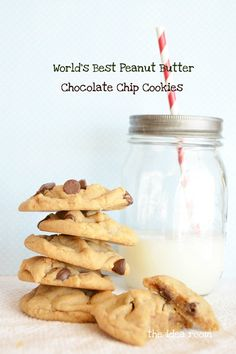 World's Best Peanut Butter Chocolate Chip Cookie Recipe | This was so good! We did it pizookie-style and it turned out yummy with vanilla ice cream on top.