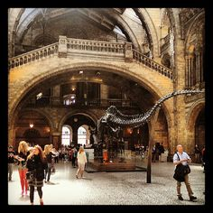 Queens Gate Entrance Nhm Bygreg Com