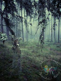 Mesmerizing scenery series Link in my bio www.melancholic.photos #fineart; #art; #fineartposter; #art #photoposter; #print; #prints; #photoprint; #artprint; #artwork