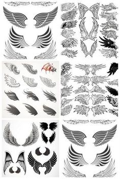 Wings templates vector: