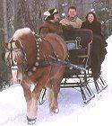 "Vermont Sleigh Rides: ""Adams Farm Makes USA Today's Winter Sleigh Rides Top Ten List"""